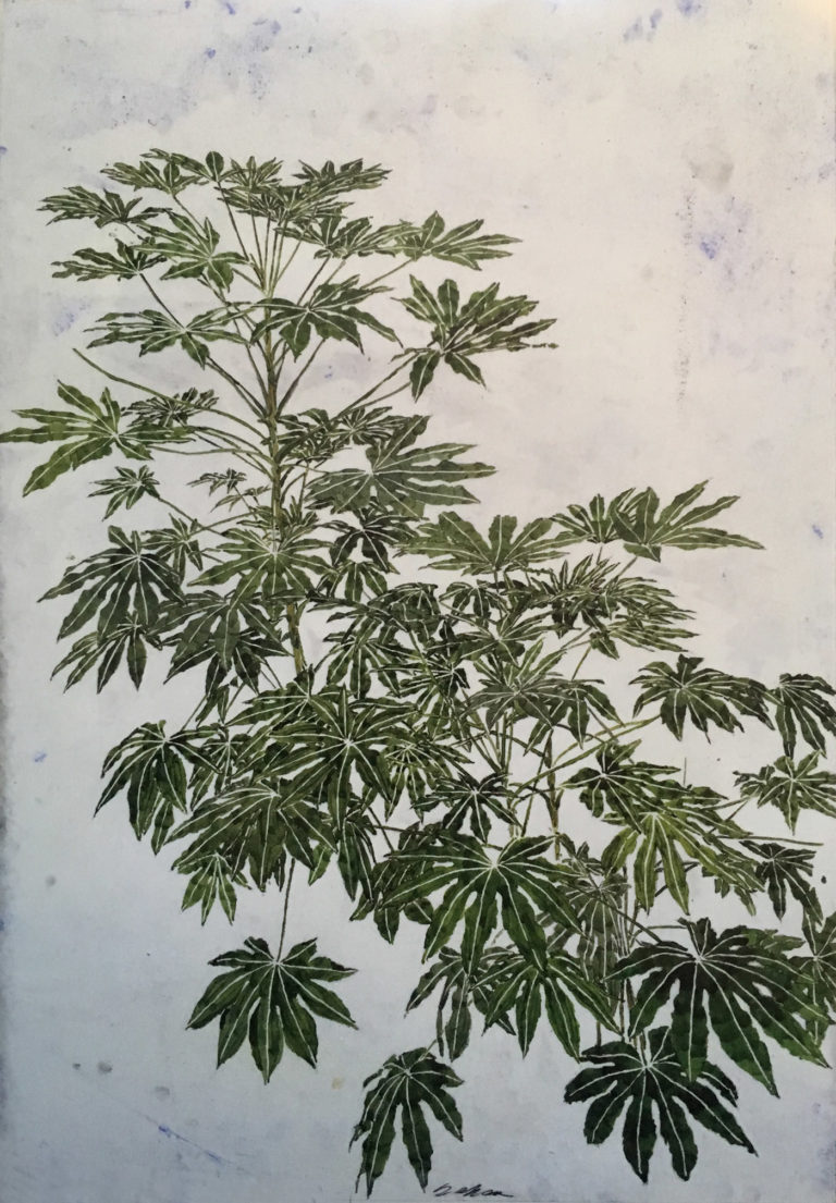 Foliage XXXVIII