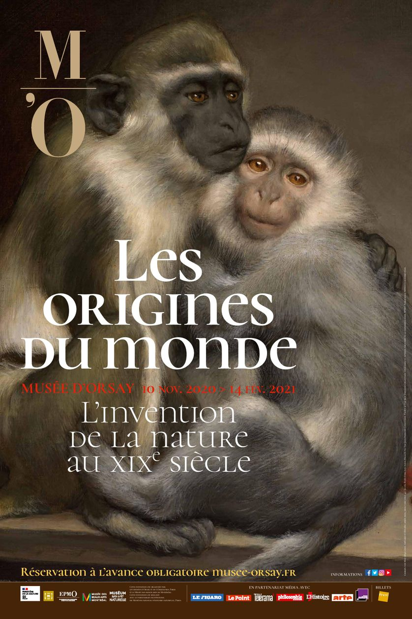 Image for Les origines du monde